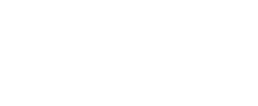 North Texas Shopping Logo 2x